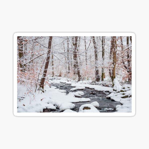 forest creek in winter forest Sticker