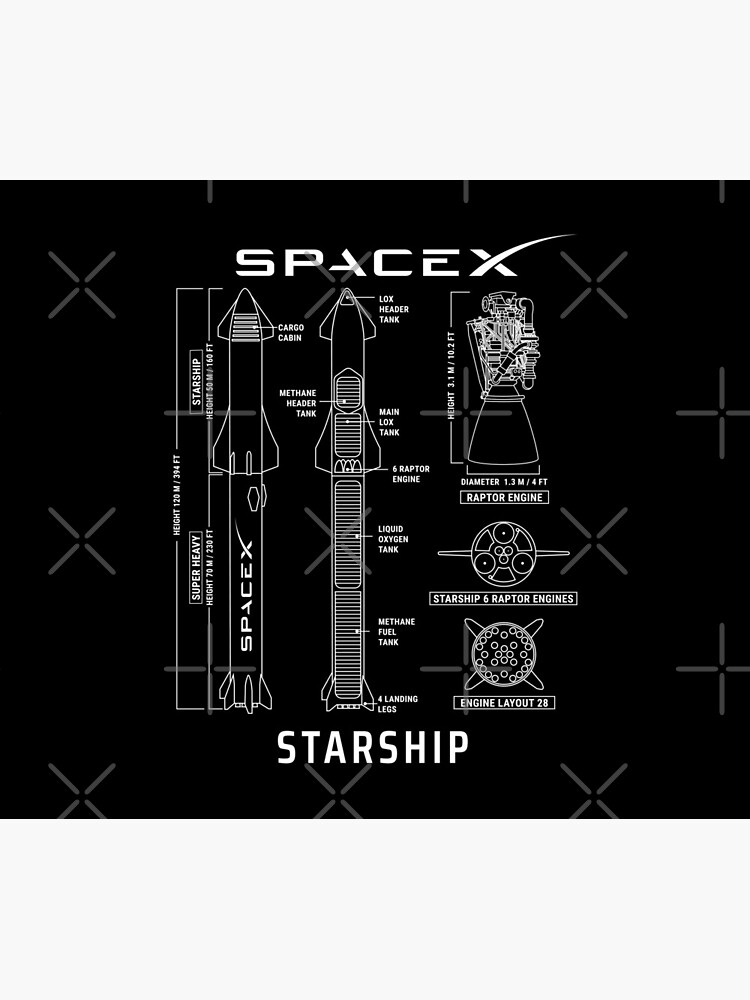 SpaceX Starship Blueprint by MartianCloset