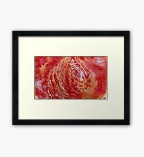 Mount Kiki Framed Print