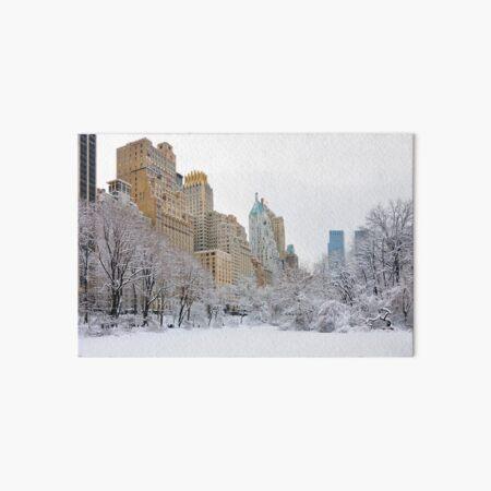Central Park South - New York Art Board Print