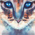 Look into my eyes, cat by aquaarte