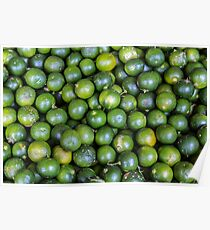Calamansi (Sweet Green Tropical Lemon) Poster