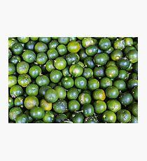 Calamansi (Sweet Green Tropical Lemon) Photographic Print