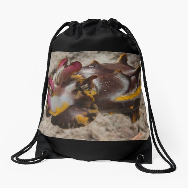 Flamboyant Cuttlefish, Kapalai, Sabah, Malaysia Drawstring Bag