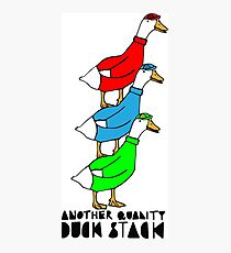 Another Quality Duck Stack- with words! Photographic Print