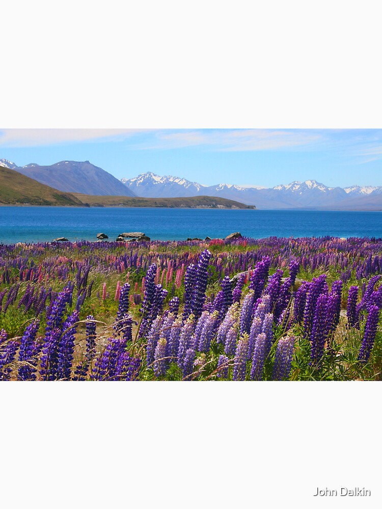 Lake Tekapo and wild flowering lupins by JohnDalkin