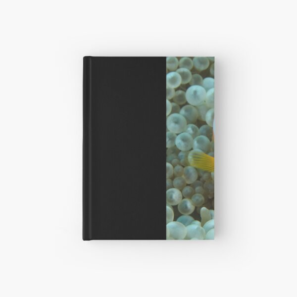 Black Anemonefish - Amphiprion melanopus Hardcover Journal