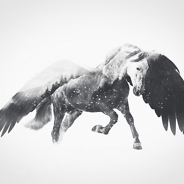 Pegasus (Black & White) by andywynn
