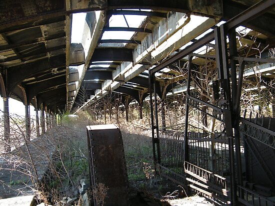 Abandoned New Jersey Central Railroad Terminal  Shed, Liberty State Park, Jersey City, New Jersey  by lenspiro