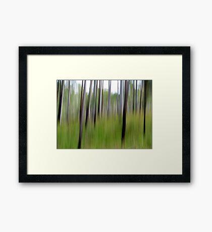Cottan-Bimbang #5 Framed Print