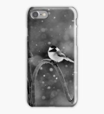 The Annual St. Paddy's Day Storm, 2016 iPhone Case/Skin