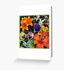Orange Sparkle - Collage featuring Orange Lilies Greeting Card