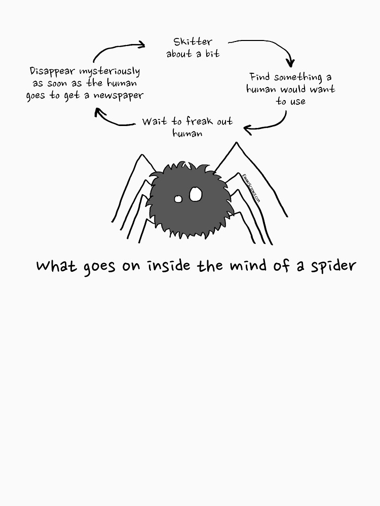What goes on inside the mind of a spider by ErrantScience