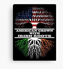 American Irish Canvas Print