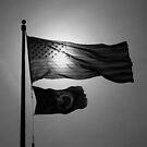 Grey Flags by Daniel Owens