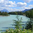 Jasper, Alberta, Canada by Elfriede Fulda