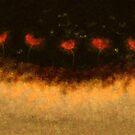 Poppies by auroraarts1