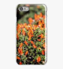 Fire Bush iPhone Case/Skin