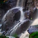 Down by the falls by Mark Williams