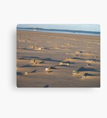 Lumps and Bumps (light and shade) Canvas Print
