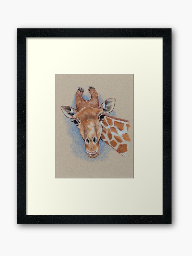 Cute Giraffe Animal Colour Pencil Drawing Framed Art Print