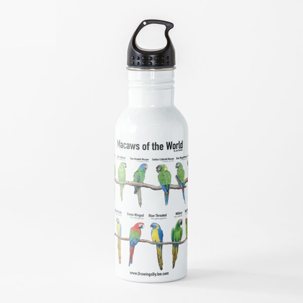 Macaws of the World Water Bottle