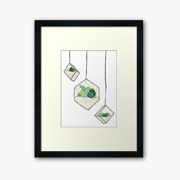 Hanging Succulents One Framed Art Print