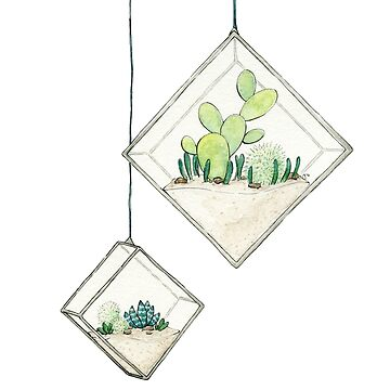 Hanging Succulents Two by JenniferCharlee