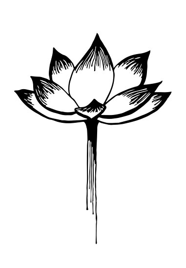The great lotus flower posters by jacqui culler redbubble the great lotus flower by jacqui culler mightylinksfo
