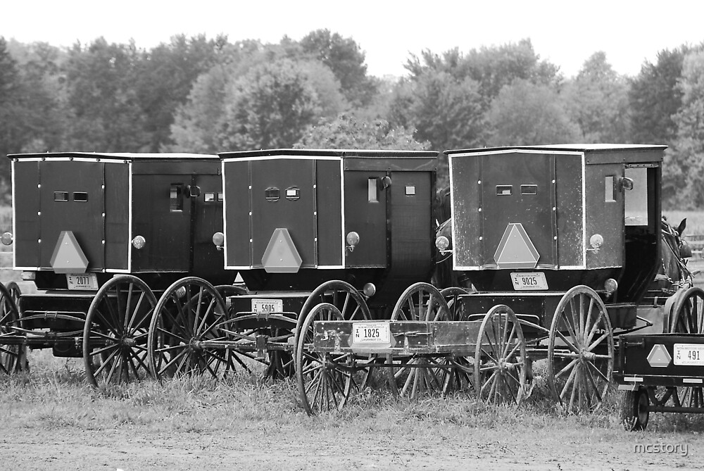 Amish Buggies by Mary Carol Story