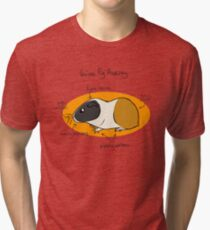 Guinea Pig Anatomy Tri-blend T-Shirt