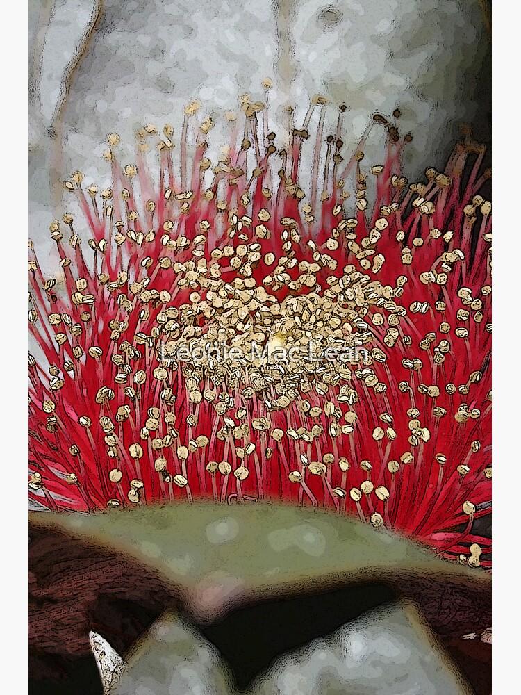 The Fabulous Mottlecah Flower by yallmia