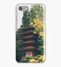 Warm Fall Colors iPhone Case/Skin