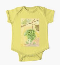 Picture a Vineyard Kids Clothes