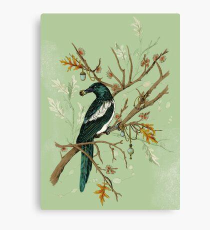 Magpie Birds Canvas Print