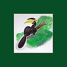 Big bird:Malabar Pied Hornbill  by Deepthi  Horagoda