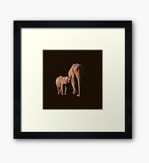 African Elephant mother and calf Framed Print