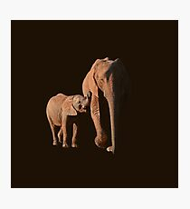 African Elephant mother and calf Photographic Print