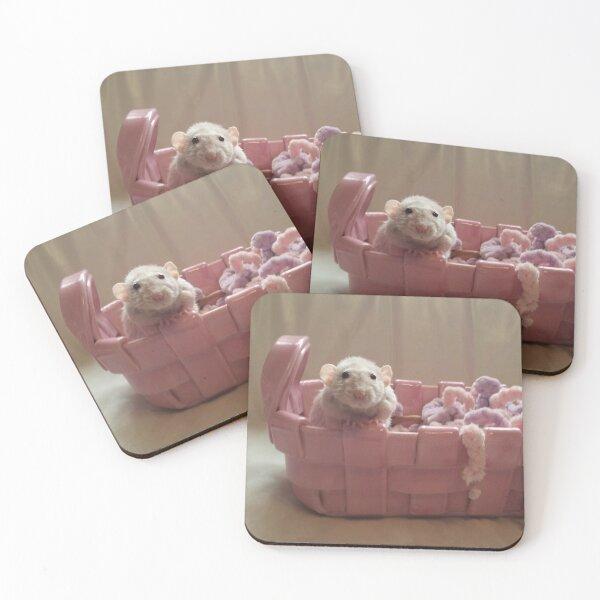 Pet Rat Reese In Pink Basket Coasters (Set of 4)