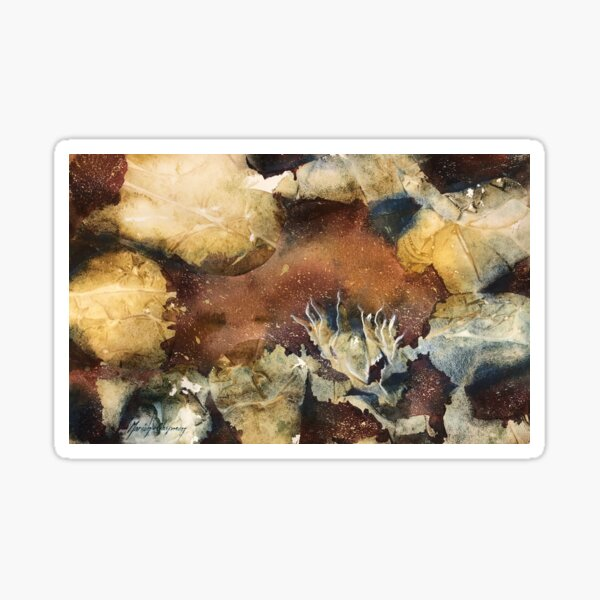 Rock pool with rocks and seaweed inspiration Sticker