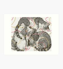 cats /rose and gold Art Print