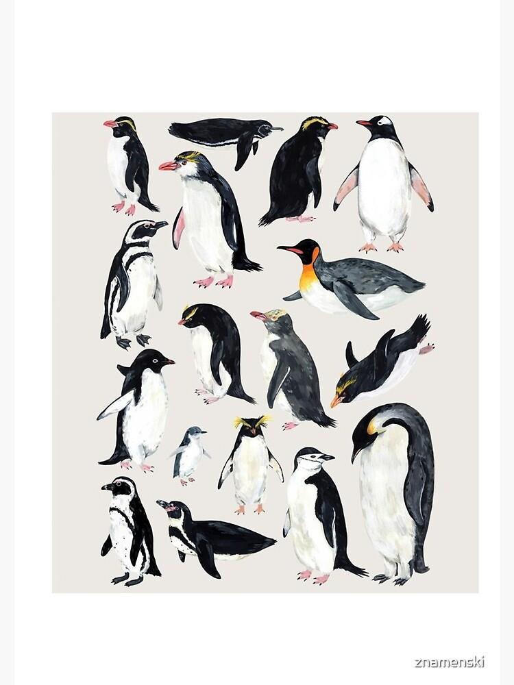 Penguins by znamenski