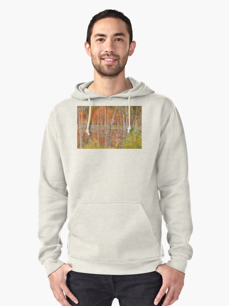 Swamp Colors Pullover Hoodie Front
