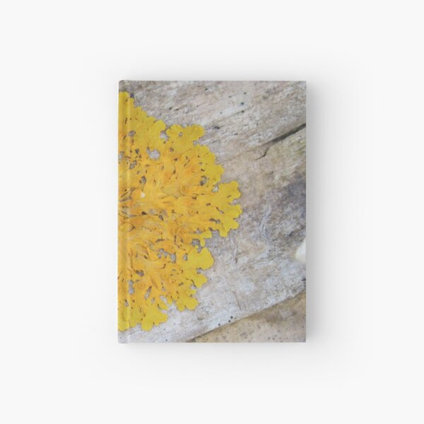 Yellow Lichen on a Log Hardcover Journal