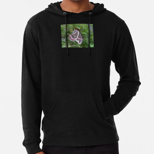 """Cecropia Moth on Plant"" Lightweight Hoodie"