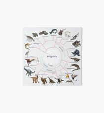 Diapsida: The Cladogram Art Board
