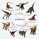 Ornithischia: The Cladogram by Franz Anthony