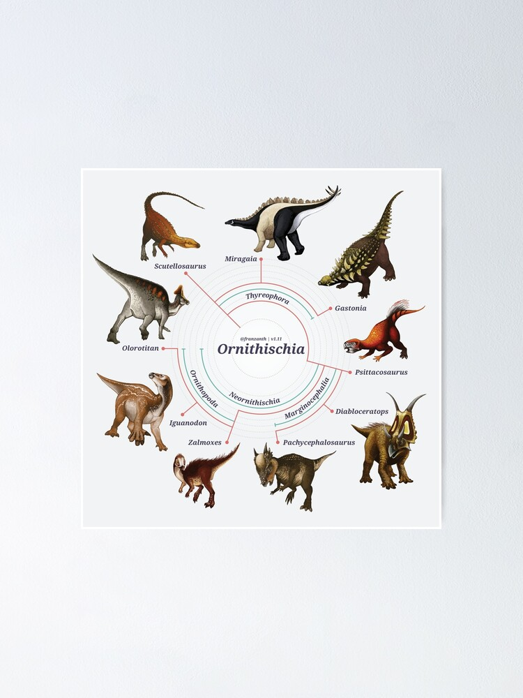 Alternate view of Ornithischia: The Cladogram Poster