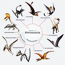 Pterosauria: The Cladogram by Franz Anthony