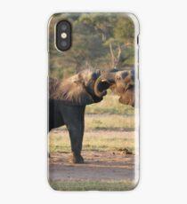 Playful Elephants iPhone Case/Skin